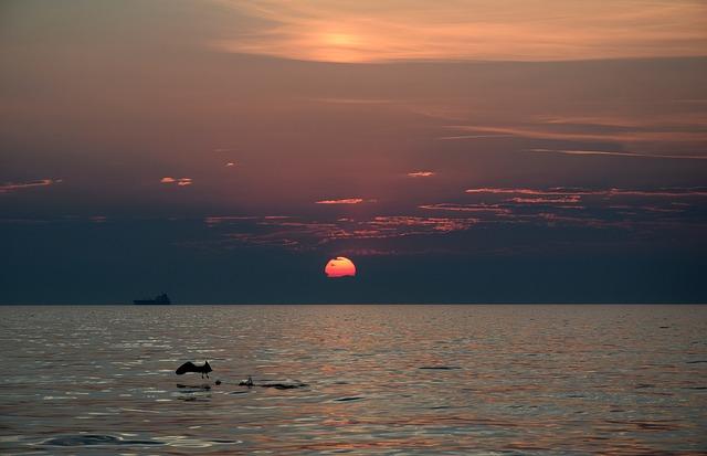Trieste, orașul născut din iubire (II)